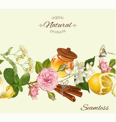 Herbal seamless banner vector image