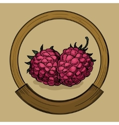 Label for raspberries jam sketch style vector image