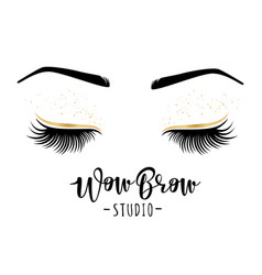 Lashes and brows vector