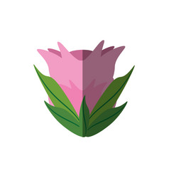 Peony flower ornament shadow vector