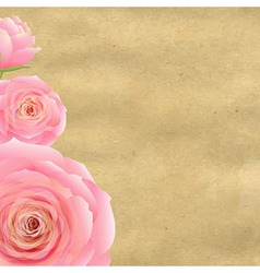 Pink Rose With Old Paper vector image