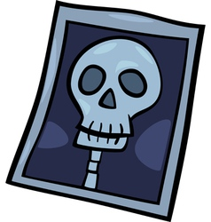 x-ray photo clip art cartoon vector image