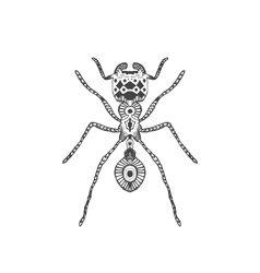 Zentangle stylized ant vector image