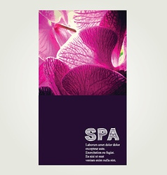 Spa poster vector image vector image