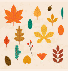 autumn leaves set flat design modern vector image