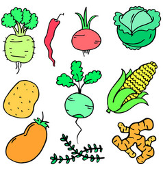 Collection stock of vegetable set cartoon vector