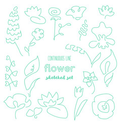 Continuous line flower drawing set vector