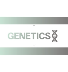 DNA icon symbol vector image