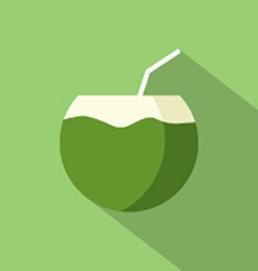 Flat Design Coconut Icon vector image