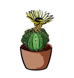 flowering cactus in a clay pot element home vector image