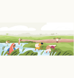 smiling indian farmers working in paddy field vector image