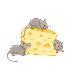 Three grey mice with a piece cheese vector