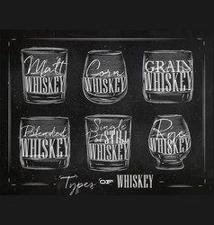 poster types whiskey vector image vector image