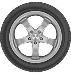 tire vector image vector image