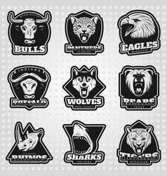 vintage team sport logos collection vector image vector image