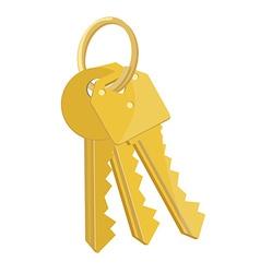 Bunch keys vector