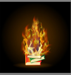 burning colored books with fire flame vector image