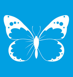 Butterfly icon white vector