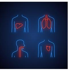Healthy human organs neon light icons set liver vector