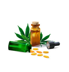 hemp oil and cannabis leaf isolated on white vector image