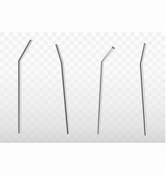 Metal stainless steel drinking straw set vector