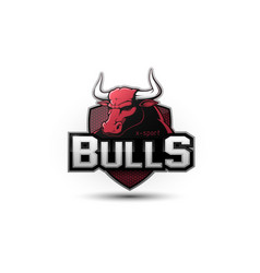 modern professional bull logo vector image