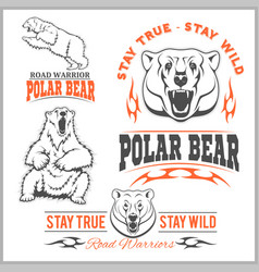 Polar bears - set vector