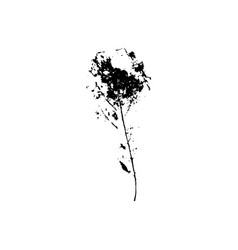 Tree leave silhouette plant and nature single vector