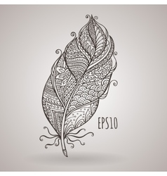 zorchatoe intricate feather Doodle vector image