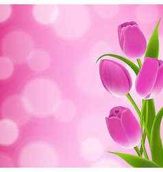 Border Of Tulips vector image vector image