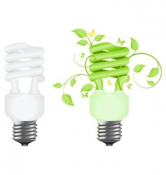 two bulbs vector image vector image