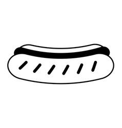 delicious hot dog food vector image