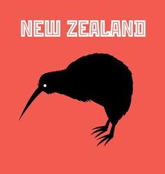 graphic color symbol new zealand kiwi bird vector image