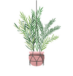 Houseplant on macrame hangers icon vector