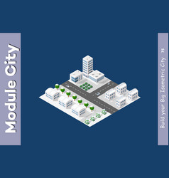 isometric module is area landscape vector image