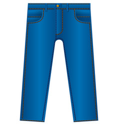 Jeans trousers icon vector
