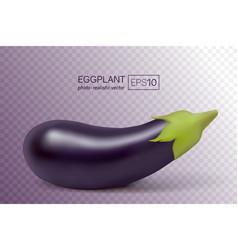 photo-realistic fresh aubergine on a vector image