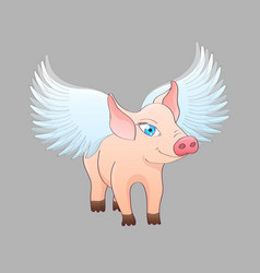 piglet with wings isolated on gray background vector image
