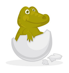 Baby crocodile inside cracked egg shell isolated vector