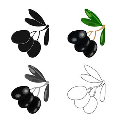 Black olives on the branch icon in cartoon style vector
