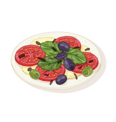 Caprese salad on plate isolated on white vector