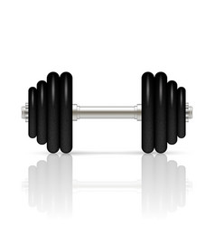 Dumbbell with removable disks vector
