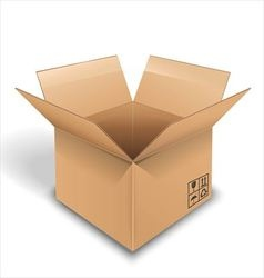 Empty cardboard box opened on white background vector