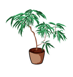 plant in a clay pot element home decor the vector image