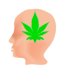 the effect of hemp on humans cannabinoid vector image