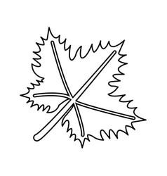 Leave grape wine symbol thin line vector