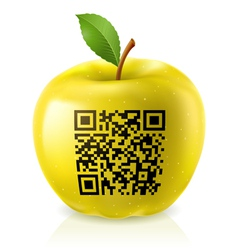 Yellow apple and QR Code vector image