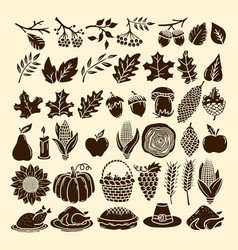 A set of autumn elements of nature handmade vector