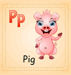 animals alphabet p is for pig vector image