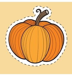 Autumn pumpkin harvest Thanksgiving and Halloween vector image